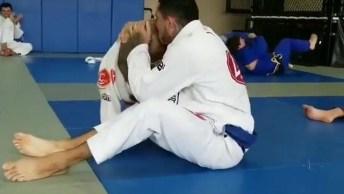 Pit Bull Lutando Jiu-Jitsu Com Seu Dono, Ele Mandou Muito Bem!