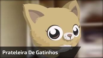 Prateleira De Gatinhos, Olha Só Como Essa Galerinha Faz Arte!