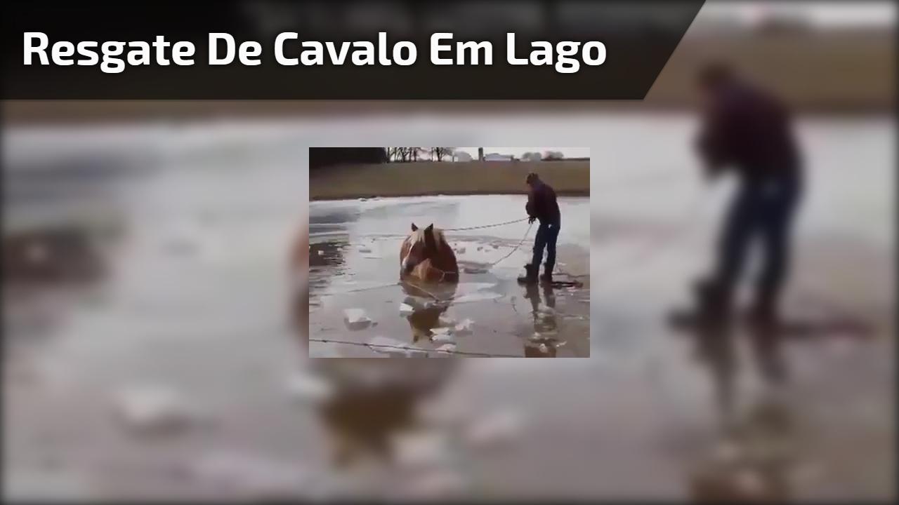 Resgate de cavalo em lago congelado, cachorro pula atrás para ajudar!!!