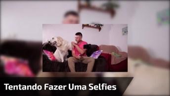 Tentando Fazer Uma Selfie Com O Cachorro, Parece Que Está Difícil Hein!