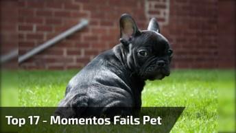 Top 17 Vezes Que As Coisas Não Deram Certo Para Esses Cachorros!