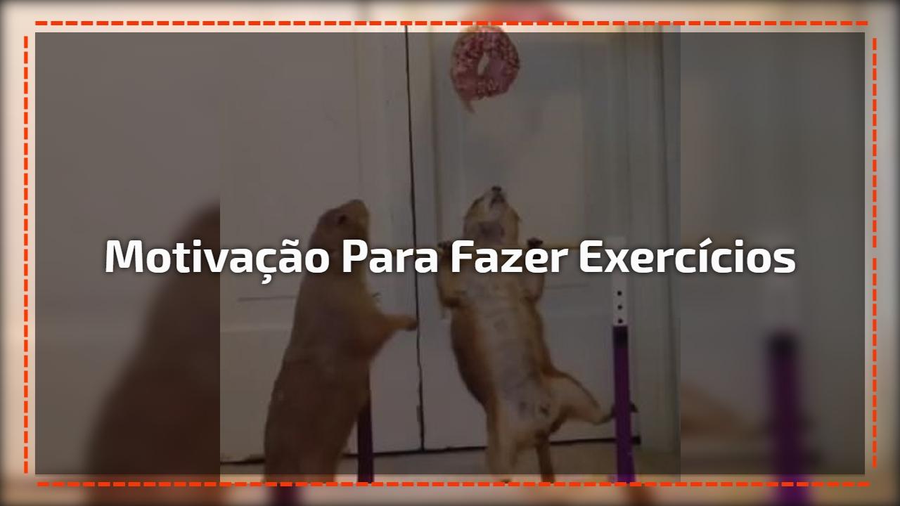 Motivação para fazer exercícios
