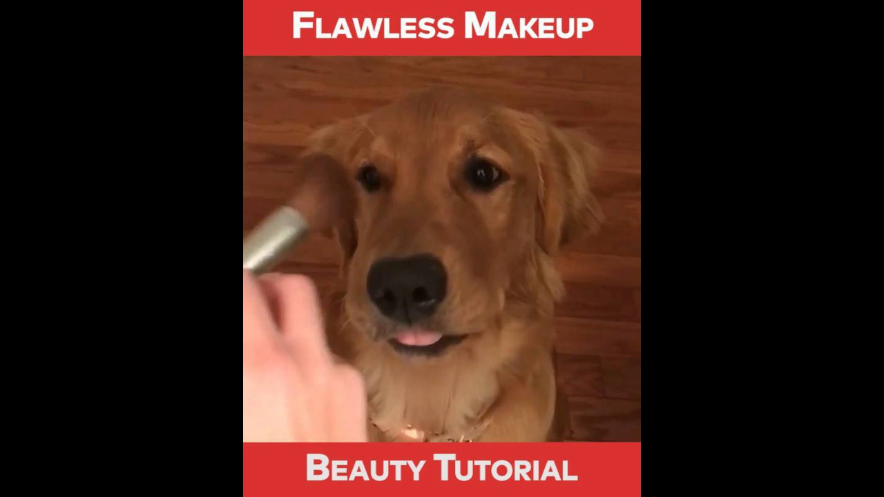 Tutorial de maquiagem para você arrasar em qualquer lugar