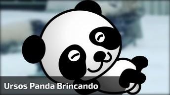 Ursos Panda Brincando Na Neve, Olha Só Que Animaizinhos Mais Fofinhos!