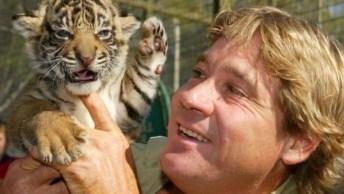 Vídeo Com Fotos De Animais Com Humanos, É Possível Viver Com Amor E Respeito!