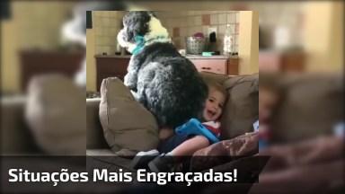 Vídeo Com Situações Mais Engraçadas Com Animais De Estimação!
