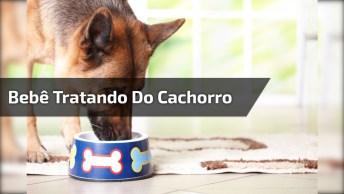 Vídeo De Bebê Com Cachorro Fazendo Arte, Veja Que Fofura Em Dose Dupla!