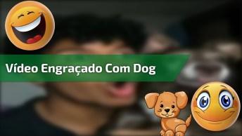 Video Engraçado De Gente Com Cachorro, Para Rir E Compartilhar!