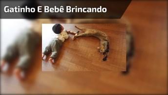 Vídeo Mostrando Um Ano De Convivência De Um Gatinho E Um Bebê!