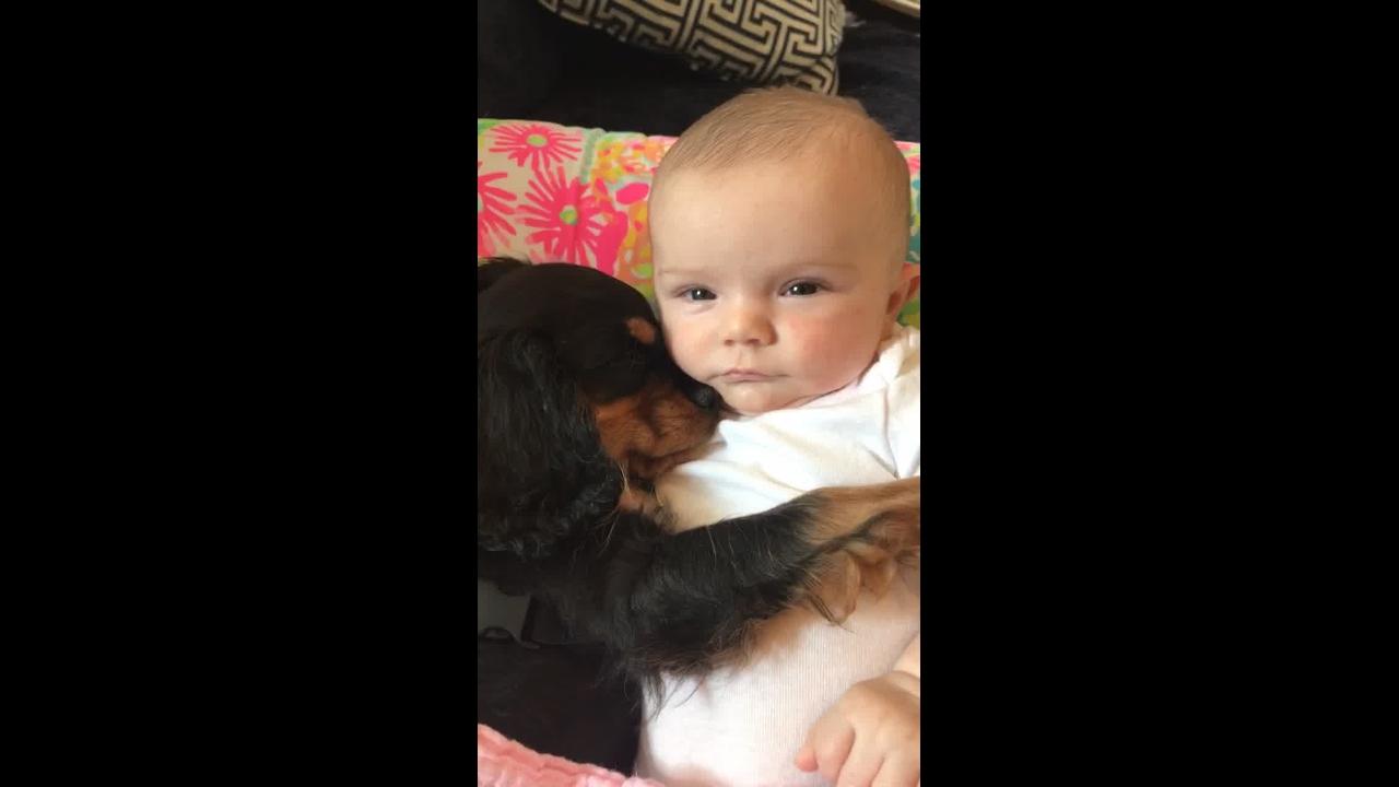 A cena mais linda de bebê dormindo com cachorro