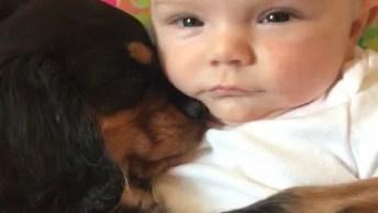 A Cena Mais Linda De Bebê Dormindo Com Cachorro, Que Fofura!