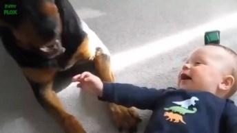Amizades Lindas De Bebês E Seus Cachorros, É Cada Um Mais Lindo Que O Outro!