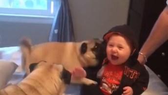 Bebê Brincando Com Cachorros, É Muita Fofura Para Um Vídeo Só!