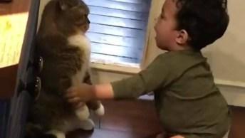 Bebê Brincando Com Gato, Parece Que O Gato Não Esta Gostando. . .