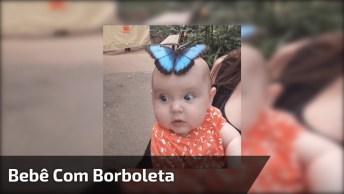 Bebê Com Borboleta Que Ousou Em Sua Cabeça, Olha Só Que Lindinha!