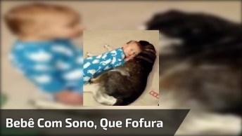 Bebê Com Muito Sono E Caindo Em Cima De Seu Amigo Cachorro!