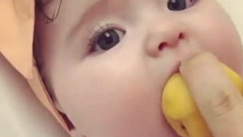 Bebê Comendo Fruta Redonda, Que Delicia De Frutinha, Confira!