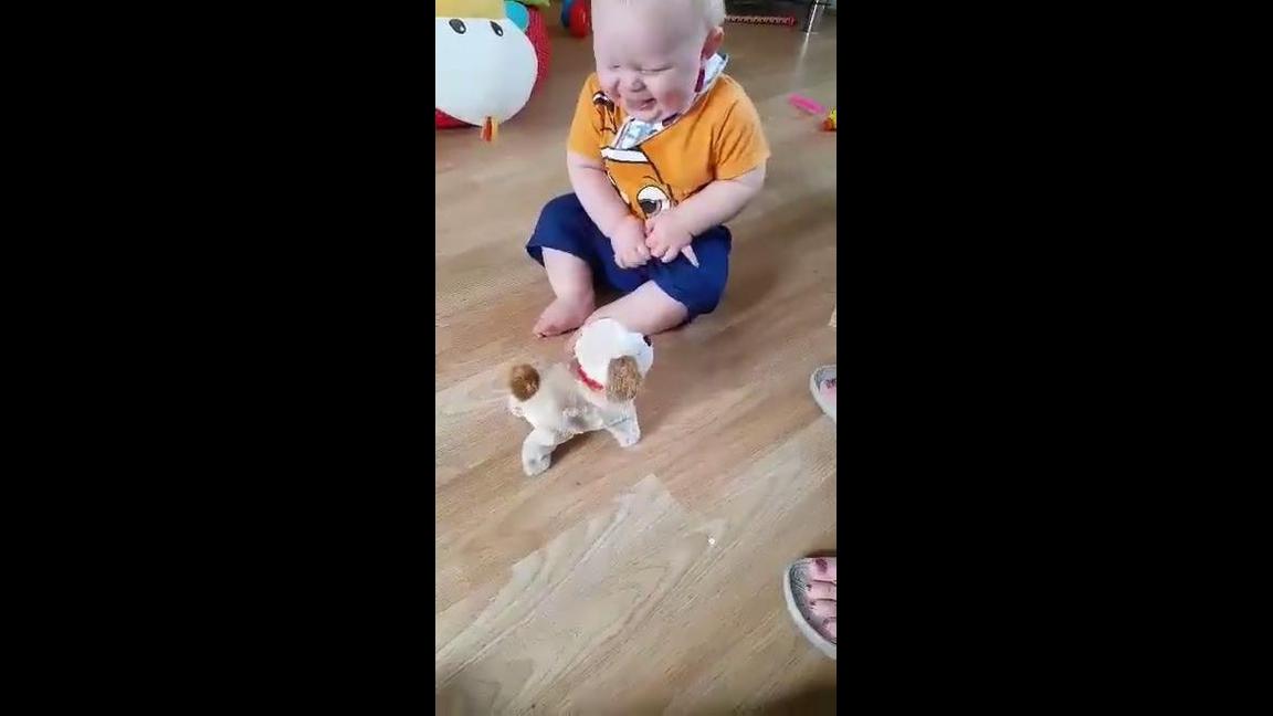 Bebê dando gargalhadas com com cachorrinho de mentira
