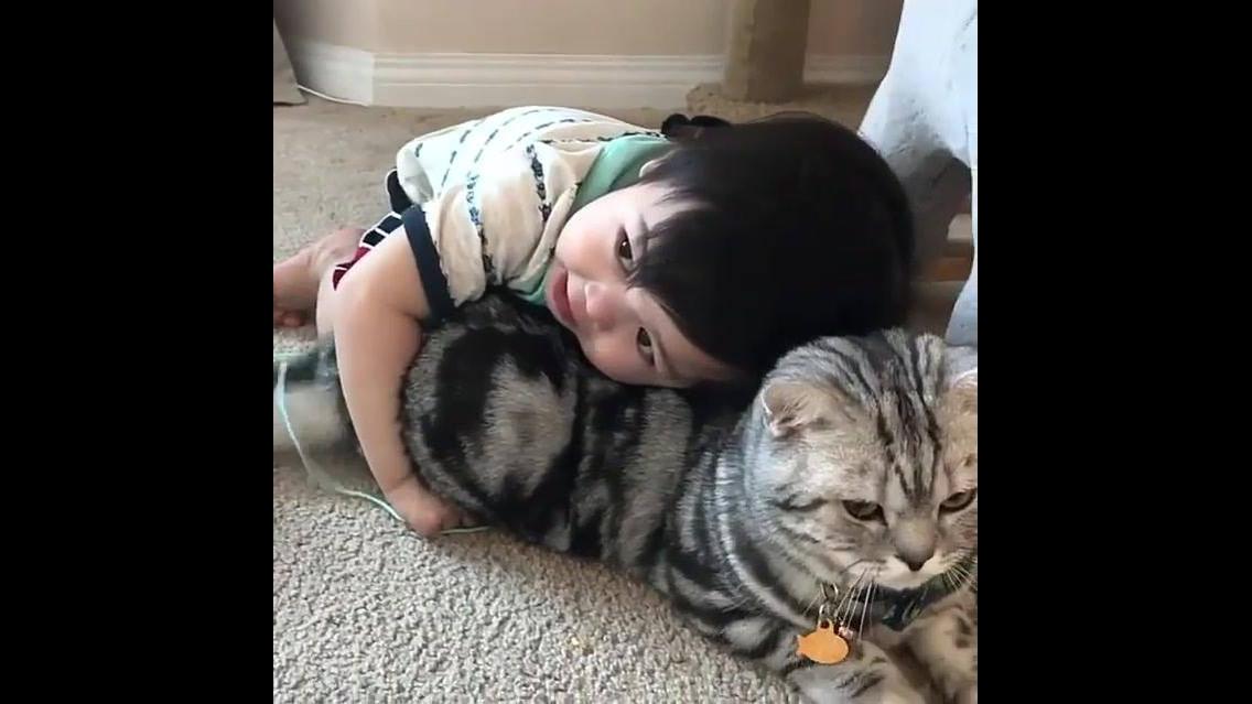 Bebê dando um abraço fofinho em seu gatinho de estimação
