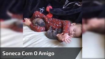 Bebê Dormindo Com Dois Filhotes De Cachorro, Uma Cena Muito Linda!