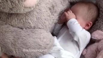 Bebê Dormindo No Colo De Seu Gigante Coelho De Pelúcia, Que Fofura!