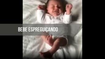 Bebê Espreguiçando, A Imagem Mais Fofinha Que Você Vai Ver Hoje!