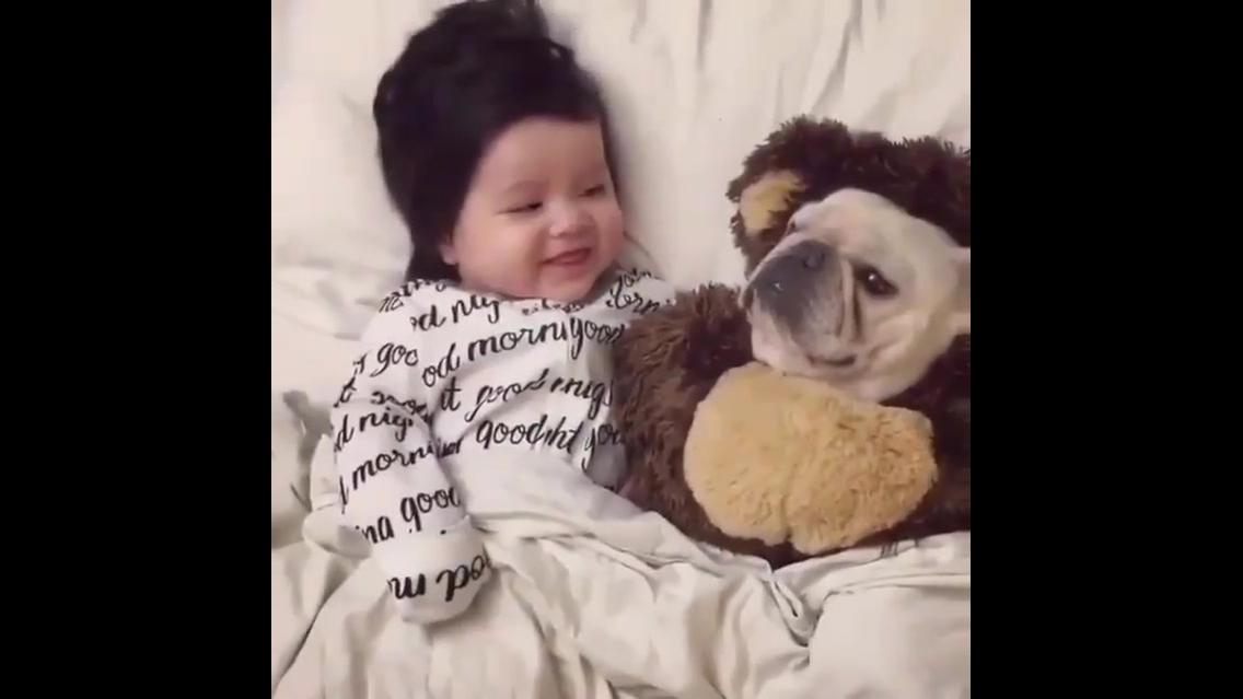 Bebê fofo sorrindo para cachorro fofo