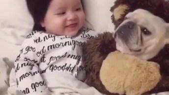 Bebê Fofo Sorrindo Para Cachorro Fofo, Quanta Fofura Em Um Vídeo!