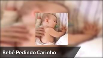 Bebê Ganhando Carinho Nas Costas, Quando Para Ele Pede Mais Hahaha!