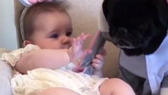 Bebê Linda Fantasiada Com Seu Cachorrinho De Estimação, Que Fofinhos!