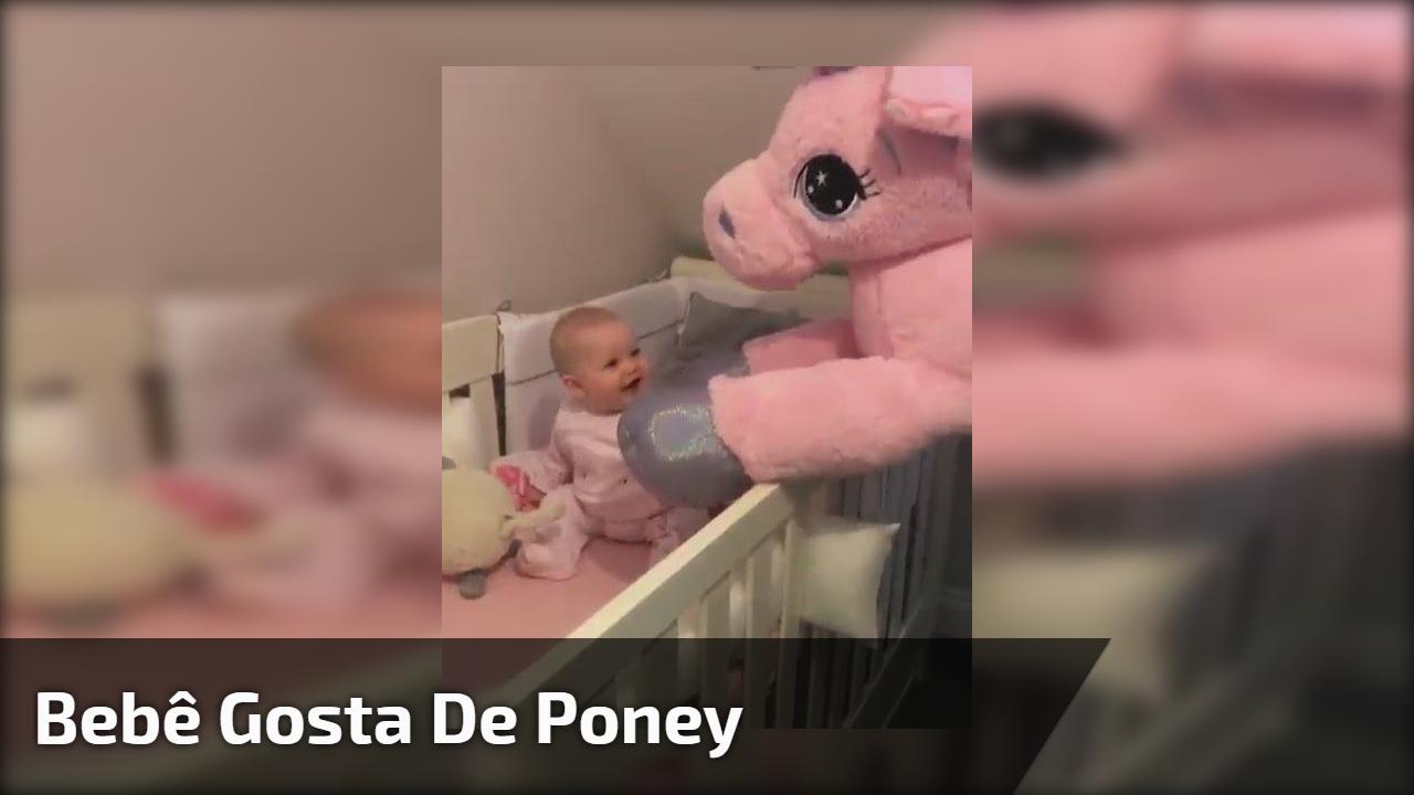 Bebê gosta de poney