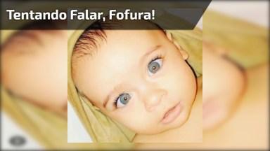 Bebê Tentando Falar, Que Coisa Mais Linda E Fofa, Confira!