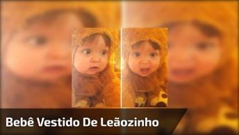 Bebê Vestido De Leãozinho Faz O Rugido Mais Fofo Que Você Pode Imaginar!