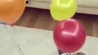 Bebês E Balões, Eles Adoram Essa Experiencia, Confira!