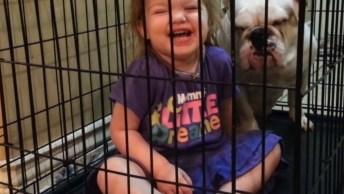 Bebês E Cachorros, Uma Combinação Que Deixa A Gente Apaixonada( O )!