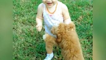 Bebês E Cachorros - Uma Dupla Que Sempre Te Deixará Feliz!