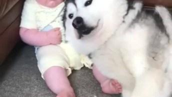 Bebês Em Momentos De Muita Fofura Com Seus Cachorrinhos!