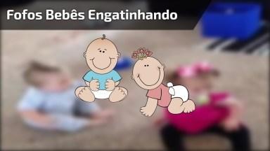 Bebês Gatinhando De Forma Muito Engraçadinha, Vale A Pena Conferir Cada Um Deles