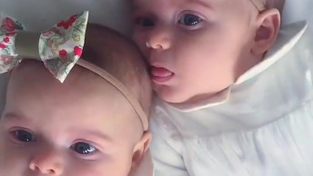 Bebês Gêmeas Com Laços Na Cabeça, Como Elas São Lindas!