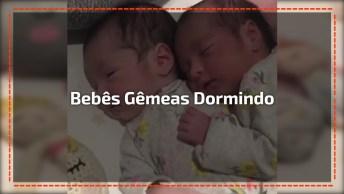 Bebês Gêmeas Dormindo Juntas, Olha Só Que Coisa Mais Linda Este Vídeo!