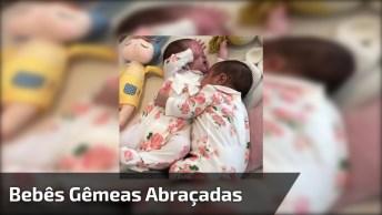 Bebês Gêmeas Em Um Momento Super Fofo, Você Vai Se Apaixonar!
