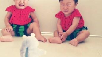 Bebês Gêmeos Com Medo De Bichinho De Pelúcia, Veja A Carinha Deles!