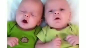 Bebês Gêmeos Espirrando Juntos, Tudo Junto Até O Fim Hahaha!