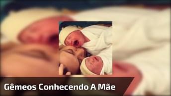 Bebês Gêmeos Recém Nascidos Conhecendo A Mamãe, Olha Só Que Imagem Linda!
