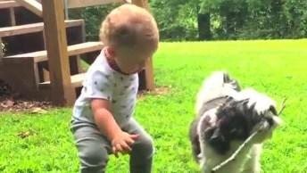 Bebês Mais Fofos Do Dia, Alguns Vão Te Fazer Rir, Outros Vão Te Encantar!