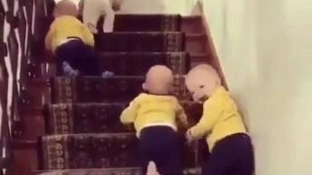 Bebês Subindo As Escadas E Se Divertido, Confira E Compartilhe!