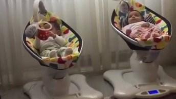 Cadeirinha De Balanço Para Bebê Incrível, O Sonho De Toda Mamãe!