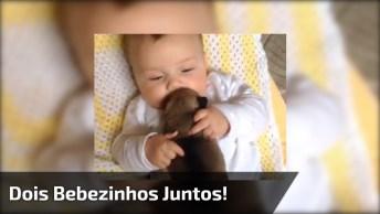 Dois Bebezinhos Juntos, Fofura Em Dose Dupla, Prepare-Se Para Se Apaixonar!