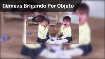 Gêmeas Brigando Por Cauda De Objeto, Bebês Em Dose Dupla!