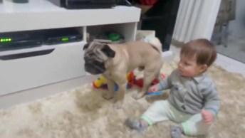 Pega-Pega Entre Bebê E Cachorro, O Vídeo Mais Fofo Que Você Vai Ver Hoje!